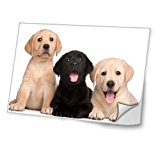 Dogs 10001, Labrador, Skin Sticker Decal Protective Cover Vinyl with Leather Effect Laminate and Colorful Design for Laptop 11.6