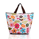 Kasstino Waterproof Picnic Lunch Bag Tote Insulated Cooler Travel Zipper Organizer Box (A)